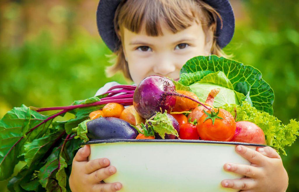 小さなお子さんにも安心!安全性の高い食材宅配