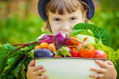 安全性の高い食材宅配ベスト3!小さな子供にも安心の業者はどこ?