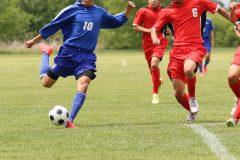 電力自由化で注目されるスポーツとの意外な関係