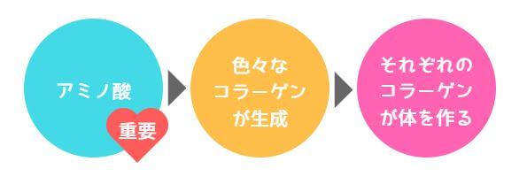 コラーゲン(アミノ酸)