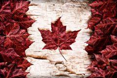 【カナダ留学】どこの都市にする?おすすめの人気都市まとめ