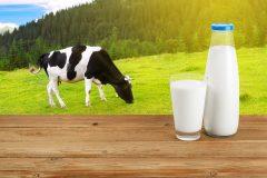 朝起きての1杯が効果抜群!牛乳が便秘にいいの?