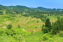 新潟県のふるさと納税のお得なお礼品や人気の品が一目でわかる!
