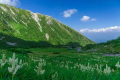長野県のふるさと納税のお得なお礼品や人気の品が一目でわかる!