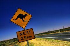 大手から小さい会社まで【オーストラリア留学エージェント】おすすめ12選