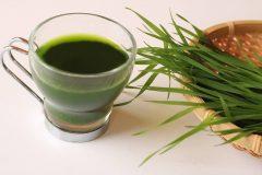 青汁に含まれるクロロフィルの効果は?口臭予防に役立つって本当なの?