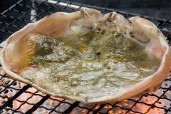 最高にうまい蟹味噌が食べれるおすすめの人気カニ通販サイトはどこ?
