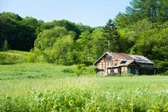 空き家となった土地の管理は必要?価値を維持できる手間や費用は?