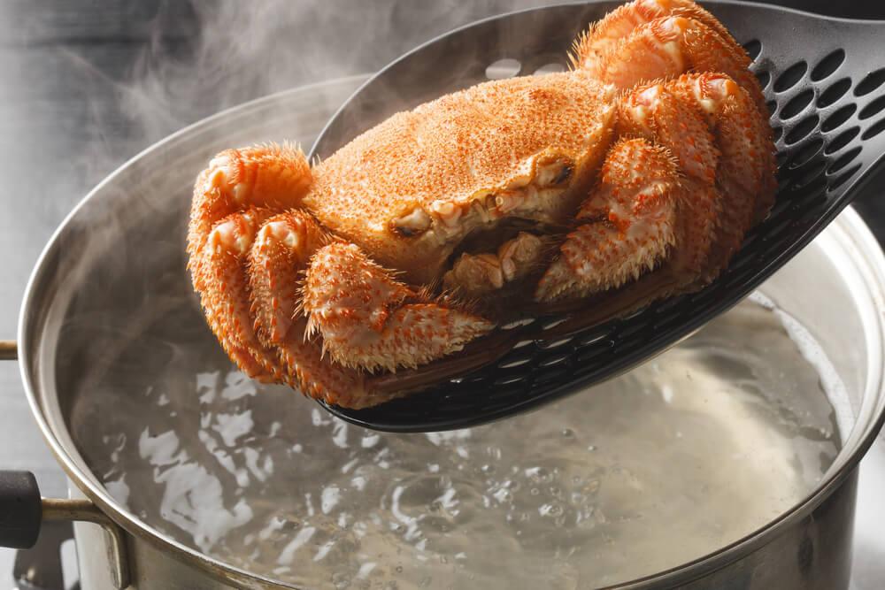 毛ガニの味噌が最も美味しい!