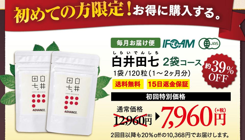 白井田七 価格