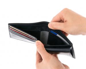 ジョージブライドルバイアリーパース 二つ折り財布 (1)