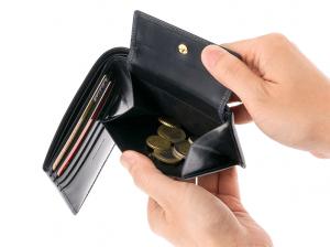1ジョージブライドルバイアリーパース 二つ折り財布 (1)