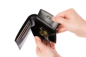 クリスペルカーフロシュパース 二つ折り財布