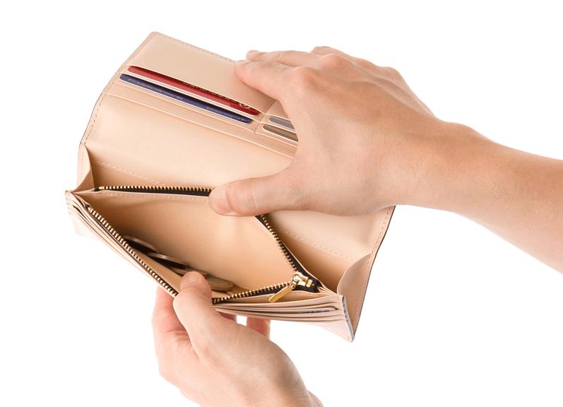 COCOMEISTER (ココマイスター)コードバン薄型長財布