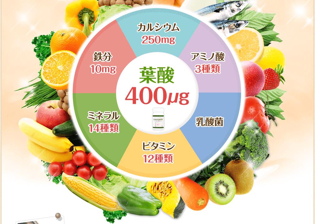 栄養成分の円グラフ