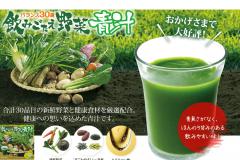 エバーライフ 飲みごたえ野菜青汁の効果や口コミ|価格の最安値は?