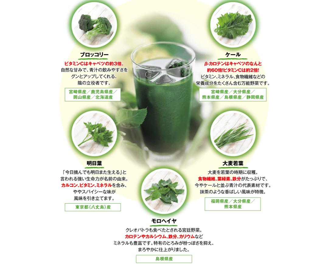 サンスター粉末国産野菜5種 (1)