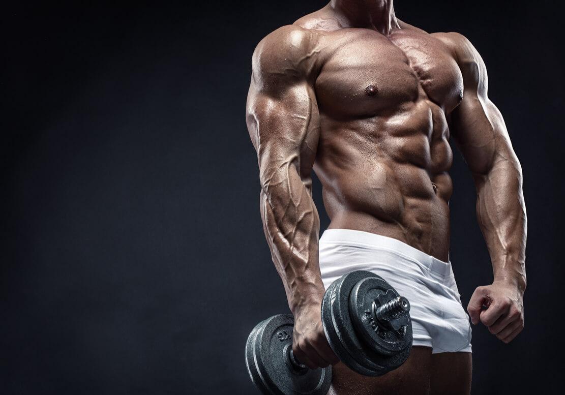 脂肪が筋肉に変わっている