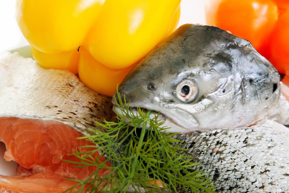 鮭の鼻軟骨からプロテオグリカンを抽出