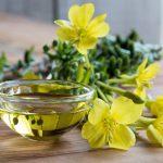 γ(ガンマ)リノレン酸の効果とは?摂取できる食品と人気のサプリを紹介!