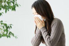 乳酸菌でアレルギー症状が軽くなる!?ツライ時期を乗り越えるための秘策