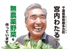 無農薬野菜ミレーの特徴を解説!口コミや値段も紹介
