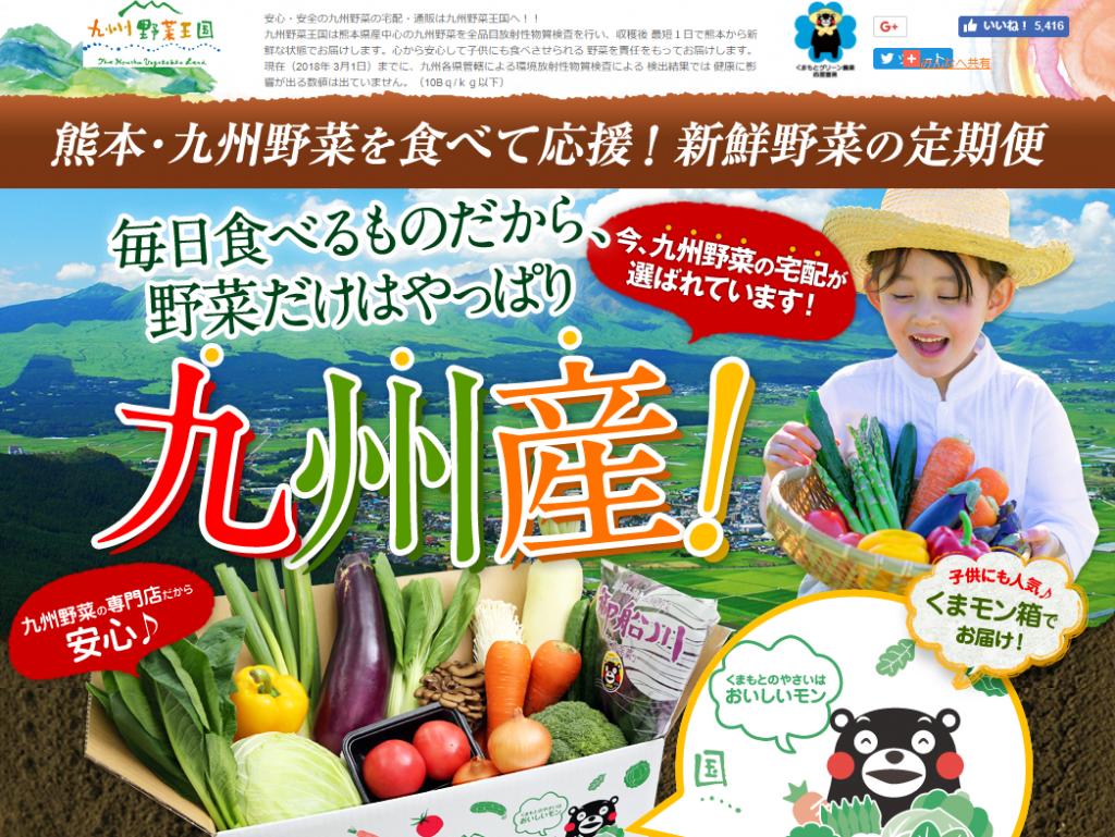 九州野菜王国の特徴や評判を紹介!野菜の価格は高い?