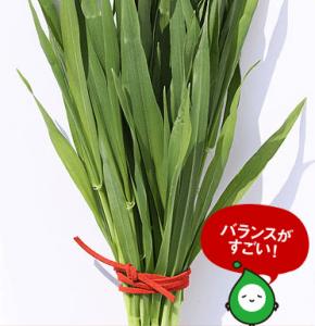 リッチグリーン大麦若葉