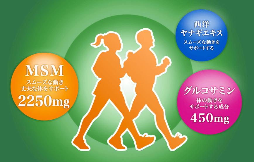久光製薬MSM+グルコサミンはこんなサプリ