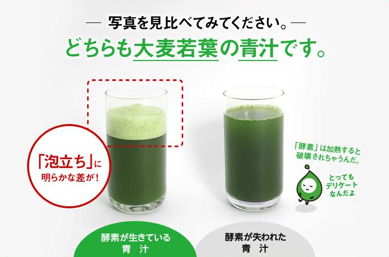 リッチグリーン酵素 おすすめ