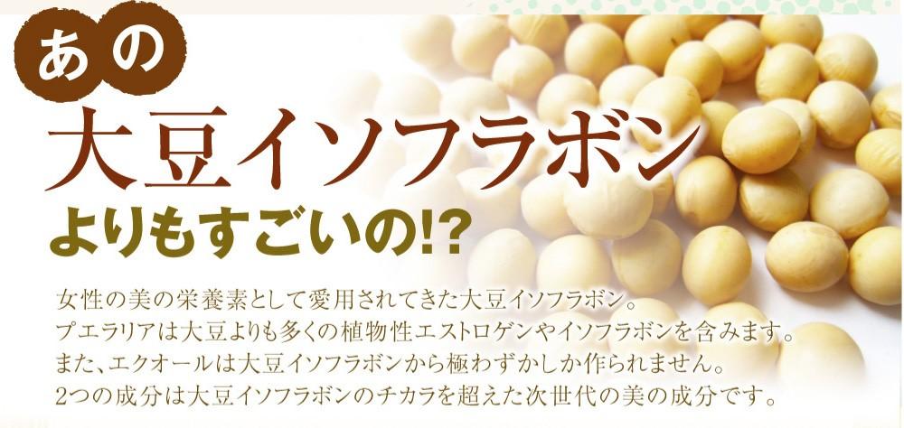 2.大豆イソフラボンの40倍の働きがあるプエラリアを配合
