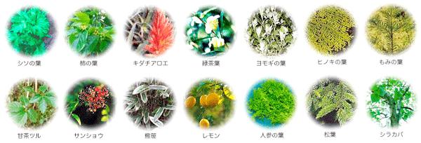 独自ブレンドした植物成分