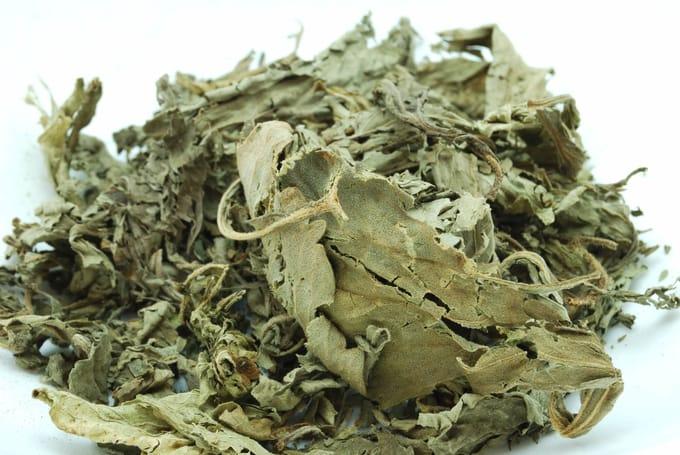 甜茶の効果・効能|おすすめのお茶や飴、サプリメントをまとめてご紹介