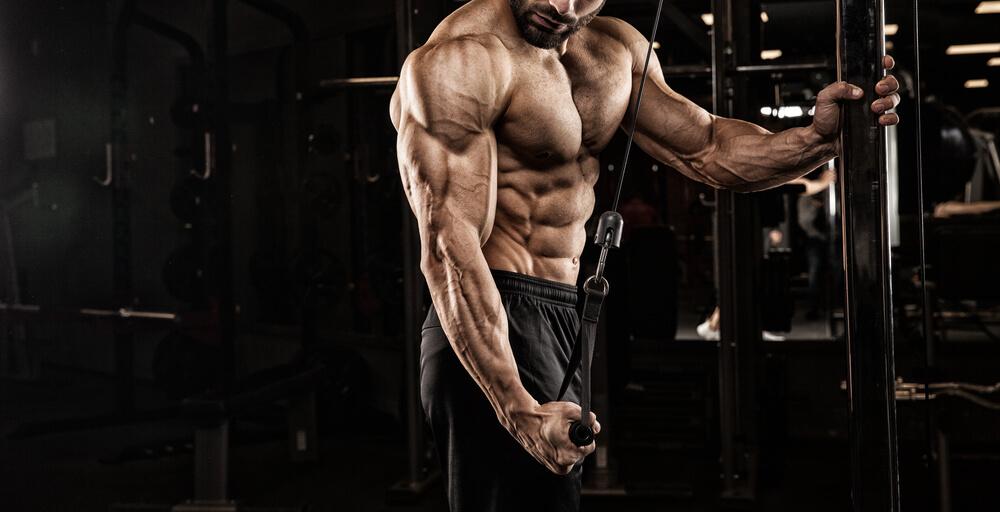 筋肉を付けたい方